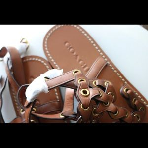 Coach Shoes - GLADIATOR COACH SANDALS NEW